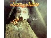 serpente l'arcobaleno Craven, 1988)