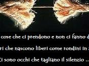 Pino Daniele torna indietro