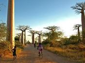 Madagascar /Proverbi malgasci /Dono popolo semplice