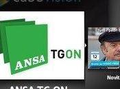 Cubovision Telecom parte 'Ansa