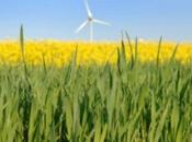 L'Italia ricca bioenergie