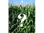 Cosa sappiamo degli Ogm?