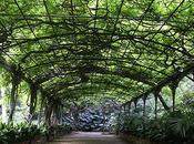 giardino botanico Concezione Malaga