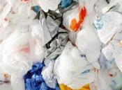 Stop sacchetti plastica. Forse...