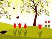 L'uccellino tulipano