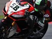 Superbike, Silverstone: pole position Laverty, Ducati Checa torna prima fila