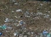 Lecce: rifiuti abbandonati viale Giovanni Paolo