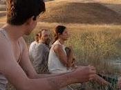 Mostra Cinema Venezia: Giorno Pallaoro, Coppola, Dolan, Knight