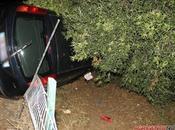 Loredana Errore stato ebbrezza: incidente stradale Agrigento #Amici
