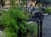 vegetazione riprende città. Jurassic Park Paolo