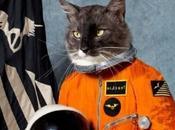 IRAN Vuole lanciare nello spazio gatto!