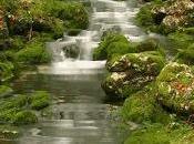 Pensiero poetico...Acqua