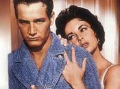 """Oggi alle Studio Universal presenta """"Omaggio Paul Newman"""""""
