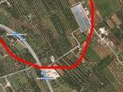 Osservazioni fatte sulla Lecce Gallipoli agro Copertino oliveti interessati seccume giorno ottobre 2013 dalle 15.00 alle 17.00 Dottori Agronomi Antonio Bruno Vincenzo Mello