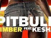 Pitbull feat. Kesha Timber Video Testo Traduzione