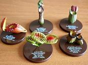 Piante carnivore....gadget collezione