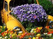 Auto creative? emissioni zero? Eccole come vasi fiori giardini mobili