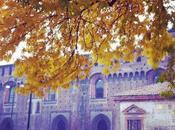 Tutorial portacandele autunno fai-da-te