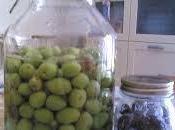 cultura dell'olio d'oliva Sicilia Vito Capo.