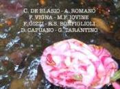 Luigi Turinese L'anima errante. Variazioni Narciso (2013, flower-ed)