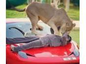 Humaid Abdalla Albuqaish suoi leoni: impazzano foto Instagram