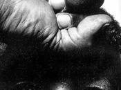 Nelson Mandela 18.07.1918 05.12.2013