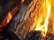 legno, fonte rinnovabile sostituire petrolio