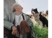 """quattro volte"""", film Michelangelo Frammartino rivedere"""