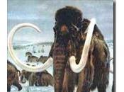 Mammut rinascere grazie alla clonazione