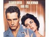 """gatta tetto scotta"""" Tennessee Williams"""