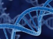 Genetica evoluzione: siamo uomini marionette?