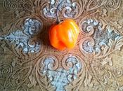 strane presenze...snake gourd bhaji Stir-fried bitter melon
