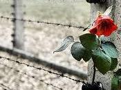 Giornata della Memoria: eventi Siena Provincia