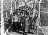 Giornata della Memoria 2014 Tutti programmi ricordo dell'Olocausto