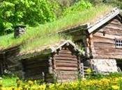 Oggi nella rubrica: giardino tetto, tradizione norvegese