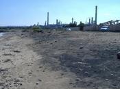 """Siracusa: inquinamento area industriale, Marika Cirone Marco (PD) """"troppe complicità, servono azioni concrete immediate"""""""