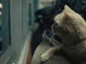 proposito Davis fratelli Coen: gatto, caso, folk, l'odissea