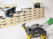 Harvad: sviluppati Robot Termiti costruttrici autonomia