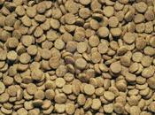 Croccantini cani gatti :troppe farine mais cereali