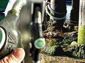 Modena primo impianto produzione biodiesel dalle alghe.
