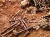 Siracusa: ossa umane cantiere della Siracusa-Floridia, probabile caso lupara bianca