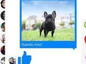 Facebook messenger disponibile windows phone