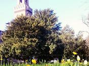 foto della settimana: Milano, Milano bella città