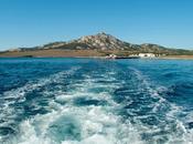 Asinara: memorie un'isola