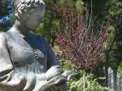 fantasma Isabella Morra: pace poetessa assassinata cento coltellate suoi fratelli