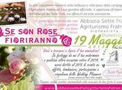 """Abbazia Sette Frati Agriturismo Frates Evento dedicato agli Sposi sono rose fioriranno"""""""