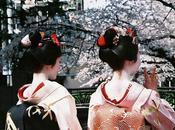 Kyoto fioritura ciliegi