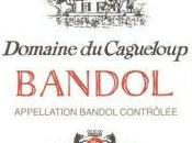 Bandol Chateau Cagueloup 2010