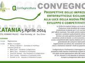 CATANIA: CONVEGNO Prospettive delle imprese ortofrutticole siciliane alla luce della nuova PAC: sviluppo competitività