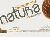 """""""Collezionare Natura"""", mostra mercato/scambio tutti appassionati della natura"""